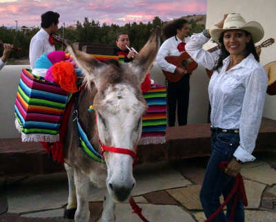 Tequila Donkey Party